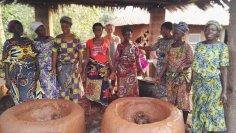 On cultive au Bénin